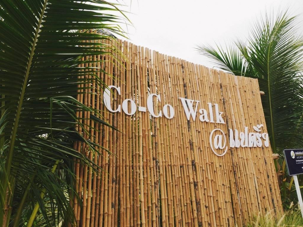 Young Folk Going Back to Root - การกลับบ้านมาทำสวนมะพร้าวของ โคโค่ คาวบอย (Coco Cowboy)