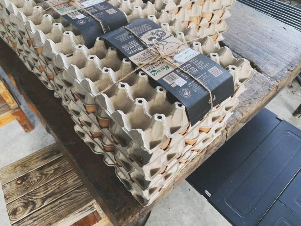 Lessplasticable (เลส-พลาสติก-เอเบิ้ล) ฟาร์มดร็อปที่มีสินค้าในชีวิตประจำวัน แบบไม่ต้องกักตุน ไม่ง้อซูเปอร์มาร์เก็ต