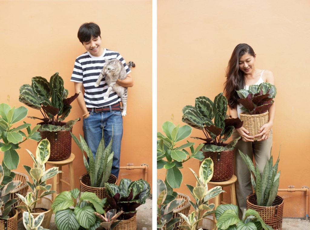 Grab Grow Green: ร้านต้นไม้ที่พร้อมส่งพื้นที่สีเขียวถึงประตูบ้านคุณ