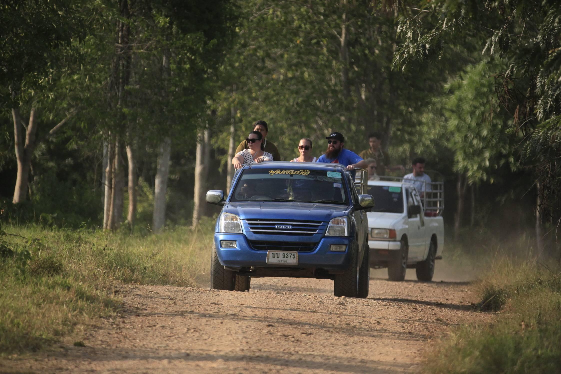 หนีร้อนมาผจญภัยป่าใหญ่ใกล้กรุงเทพฯ ที่อุทยานแห่งชาติกุยบุรี